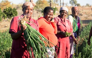 The pilot Community Adaptation Small Grants Facility in South Africa funded by AF and implemented by AF's accredited National Implementing Entity for South Africa the South African National Biodiversity Institute (SANBI), aims to channel resources to support responses to climate change that are identified and implemented by affected local communities. If approved for implementation, the projects will increase local resilience through the implementation of pragmatic adaptation responses in Mopani. Photo: SANBI