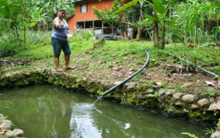 AF project in Costa Rica is working on different levels to address climate change, including the farm, community, institutional and policy-making levels.