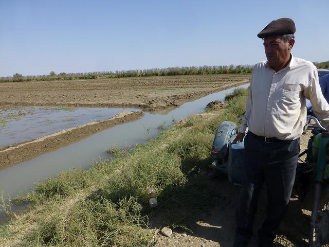 Head of Sakarchaga farmers' brigade observing field irrigation. Photo: UNDP Turkmenistan