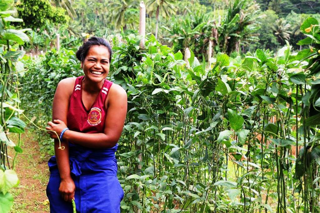 Rouru Papatua is part of the Phase 2 Young Farmers project in the Cook Islands. Photo: Melina Tuiravakai, Climate Change Cook Islands