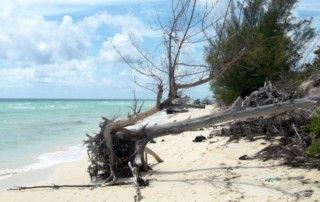 Hurricane and storm damage is evident in the coastal zone, Bahamas. Photo by Angela Churie Kallhauge.