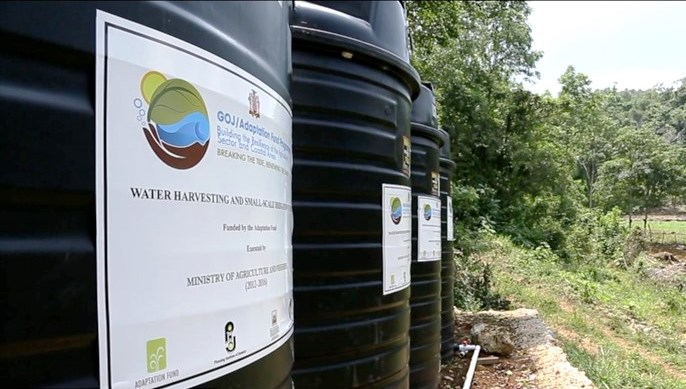 Water harvesting infrastructure installed by the GOJ-AFP to assist farmers