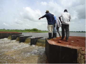 Anti-salt barriers strengthened protection of inland areas against salinization, including agricultural lands endangered from sea rise and flooding in vulnerable Senegal communities. Photo: CSE